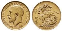Australia, 1 funt, 1914 P